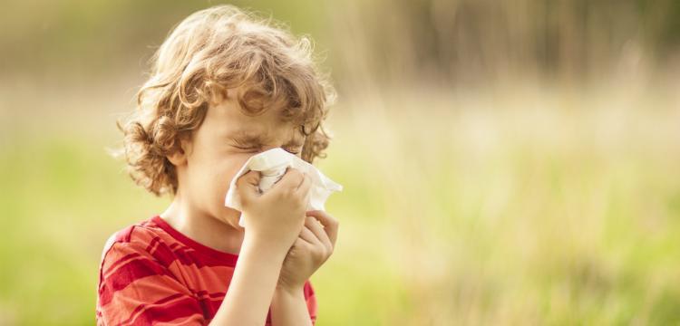 A legfontosabb kérdések és válaszok az allergiáról