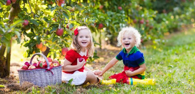 Milyen vitaminra van szüksége egy gyereknek?